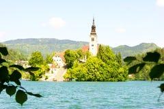 Paisaje de Eslovenia, naturaleza Fotos de archivo