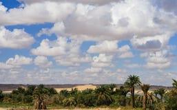 Paisaje de Fayoum Imagen de archivo