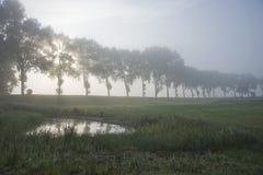 Paisaje de Flandes Imagen de archivo libre de regalías