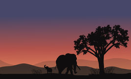 Paisaje de África con la silueta del elefante Foto de archivo