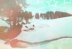 Paisaje de hadas del invierno Fotos de archivo libres de regalías