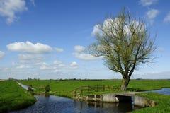 Paisaje de Holanda Fotos de archivo