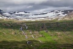 Paisaje de Islandia fotos de archivo libres de regalías