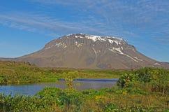 Paisaje de Islandia Foto de archivo