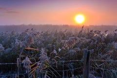 Paisaje de lámina en la salida del sol en invierno imagenes de archivo