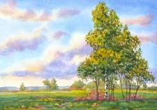 Paisaje de la acuarela Los árboles en el campo de la tarde Foto de archivo libre de regalías