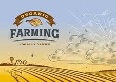 Paisaje de la agricultura biológica libre illustration