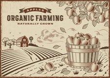 Paisaje de la agricultura biológica de Apple ilustración del vector