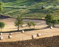 Paisaje de la agricultura con las balas de la paja Foto de archivo libre de regalías