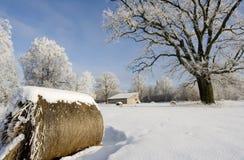 Paisaje de la aldea del invierno Foto de archivo libre de regalías