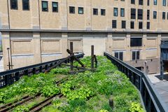 Paisaje de la alta línea Parque público urbano en un tren histórico de la carga, New York City, Manhattan Imagen de archivo