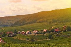 Paisaje de la atmósfera del pequeño pueblo romántico de Europa con el pueblo del viñedo foto de archivo libre de regalías