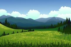 Paisaje de la belleza con el bosque del pino y el fondo de la montaña Imagenes de archivo