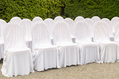 Paisaje de la ceremonia de boda en el parque Marco blanco adornado con las flores Ceremonia en el estilo blanco Foto de archivo