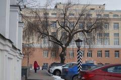 Paisaje de la ciudad: El árbol pintoresco nevado está situado en un fondo ligero rodeado por los objetos y los edificios del vint fotos de archivo libres de regalías