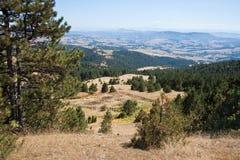Paisaje de la colina de la montaña Fotografía de archivo