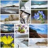paisaje de la Collage-primavera Región de Siberia occidental, Novosibirsk, Rusia fotos de archivo
