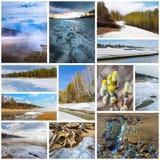 paisaje de la Collage-primavera Región de Siberia occidental, Novosibirsk, Rusia fotos de archivo libres de regalías