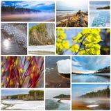 paisaje de la Collage-primavera Región de Siberia occidental, Novosibirsk, Rusia foto de archivo libre de regalías