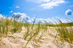 Paisaje de la costa Fotos de archivo
