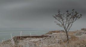 Paisaje de la costa de mar en el invierno en un día nublado Imagen de archivo