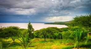 Paisaje de la costa costa del lago Langano, Oromia, Etiopía imagen de archivo