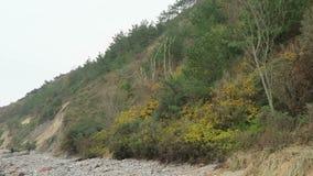 Paisaje de la costa Mecklemburgo-Pomerania Occidental, Alemania de la isla de Hiddensee almacen de video
