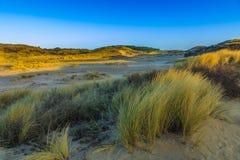 Paisaje de la duna en la salida del sol Fotos de archivo
