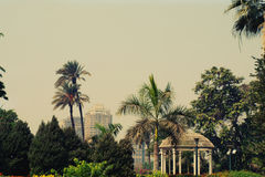 Paisaje de la escena de Egipto Imagen de archivo