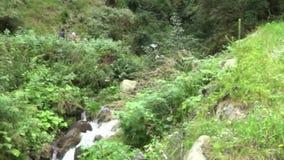 Paisaje de la escena del agua de la naturaleza de la cascada metrajes