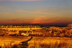 Paisaje de la estación del otoño Foto de archivo