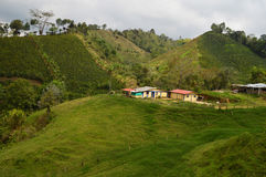 Paisaje de la granja del café en Salento Foto de archivo