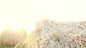 Paisaje de la granja del verano con el pajar en a cámara lenta en el fondo de la puesta del sol hermosa Comcept de la agricultura