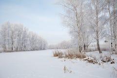 Paisaje de la helada del invierno Fotos de archivo