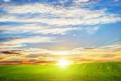 Paisaje de la hierba verde en la puesta del sol Nubes románticas Imágenes de archivo libres de regalías