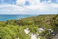 Paisaje de la isla caribeña Imagen de archivo