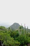 Paisaje de la isla de Aruba Imagen de archivo libre de regalías