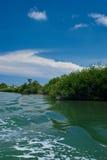 Paisaje de la laguna de Cancun Fotos de archivo libres de regalías