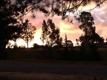 Paisaje de la mañana Imagen de archivo libre de regalías