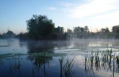 Paisaje de la mañana con niebla en el río Fotografía de archivo libre de regalías