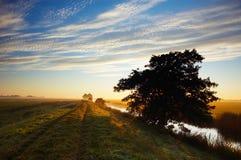 Paisaje de la mañana del otoño Fotos de archivo libres de regalías