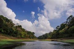 Paisaje de la mañana en parque nacional imagenes de archivo