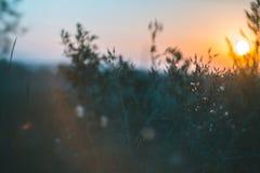 Paisaje de la mañana Salida del sol detrás del pueblo en el campo Imagenes de archivo
