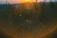 Paisaje de la mañana Salida del sol detrás del pueblo en el campo Imagen de archivo