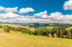 Paisaje de la montaña cárpata con el cielo nublado azul en día de verano Foto de archivo