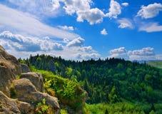 Paisaje de la montaña. Composición de la naturaleza Imagen de archivo libre de regalías