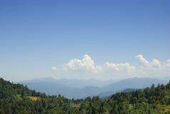 Paisaje de la montaña con el bosque verde. Agygea Imagen de archivo
