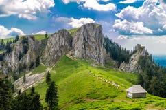 Paisaje de la montaña con el sheepfold en las montañas cárpatas, romanas fotografía de archivo libre de regalías