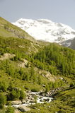 Paisaje de la montaña con la corriente Fotografía de archivo libre de regalías