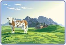 Paisaje de la montaña con la vaca. Foto de archivo